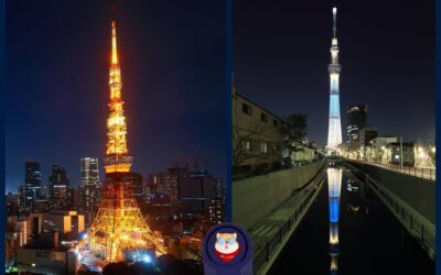 Tokyo Tower or Tokyo Skytree – Know the Difference and Which Is a National Landmark? Results May Shock You 30